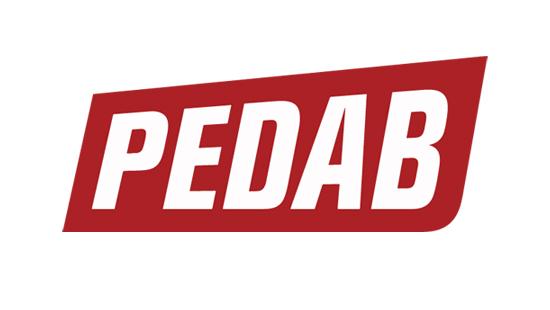 Logo Pedab